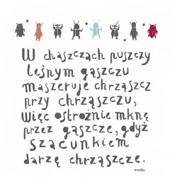 strzalkowska_endo3
