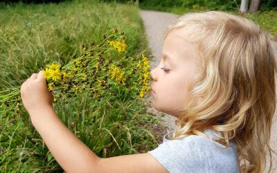Czego każde dziecko powinno doświadczyć w wakacje?